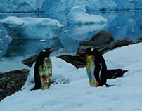 Colorful Antarctica