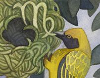 Bird Zodiac
