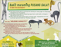 PAWS Trap and Neuter Infographics