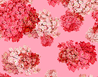 hydrangea patterns