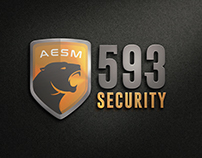 593 Security