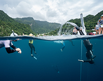 Freediving Dominica