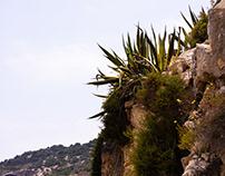 in Ibiza