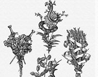 Zealot's Heart Gin Key Ingredients by Steven Noble