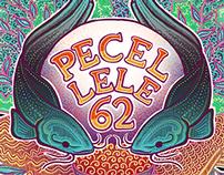 Pecel Lele 62