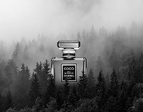Jef Prod: Lost Fragrances