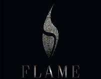 flame logo concept