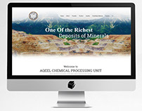Aqeel Chmeical Processing Unit Minerals