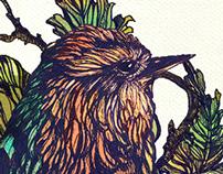 Summer Bird motif
