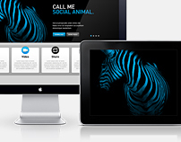 MyBlueZebra - Website