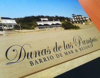 Dunas de las Pampas