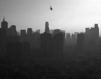 City Diving