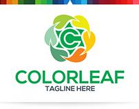 Color Leaf   Logo Template