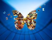2008 - Papillon
