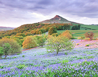 Roseberry Topping, North Yorkshire, Best Photos & Walks