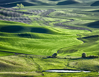 Palouse Light