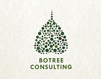 Brand Identity for Botree Consulting