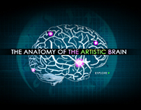 The Anatomy of the Artistic Brain