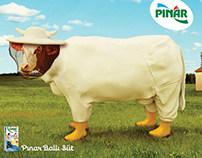 Pınar Ballı Süt - Arıcı İnek