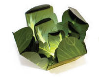 Food Package - Cabbage and Olive