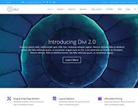 Divi WordPress Theme 2.0