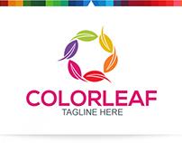 Color Leaf V.4   Logo Template