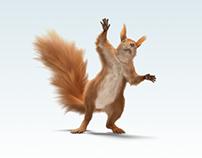 Felix the squirrel