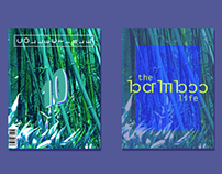 Collectible #10: The Bamboo Life