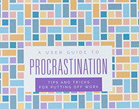 A User Guide to Procrastination