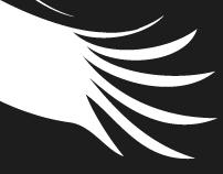 Stork. Corporate Sign-Logotype Development