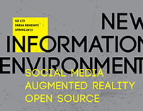 Essays on New Information Environment