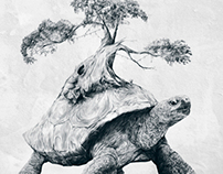 Tortoise Tree - Growth