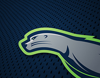 Seattle SeaLions: NHL Concept
