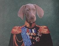Coronel Weimaraner.