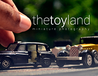 The Toyland