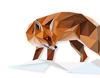 Red Fox   Digital Illustration