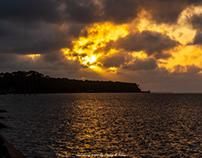 Sunrise, Birds and Shrimp Boats