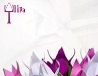 Tulip Lamp / Luminária Tulipa