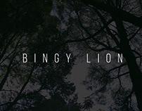 Vídeo Clip - Bingy Lion/Amor Real