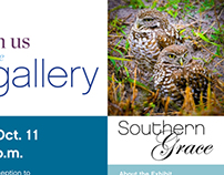 Gallery Showcase Promo | 2012