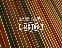 fast . fruit . factory . mx