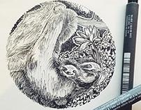 [ Lovely Sloth Love ]