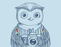 Owl photographer