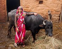 The Enchanted Land of Gods (India) - 2014