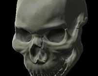 First Skull In Zbrush