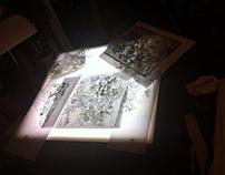 Studies for Tile Backsplash // Poppies