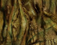 Textures - Tiger Hare Studios