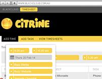 CITRINE Timesheet Feature 'Auto Detect'   BlackCloud