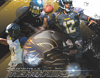 Wichita Falls Nighthawks Team Program 2014