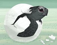 Sea Shepherd Animation Concept Art
